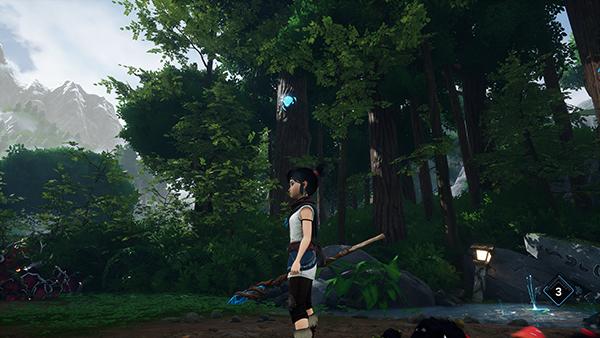 Forest Tear Lantern Cave