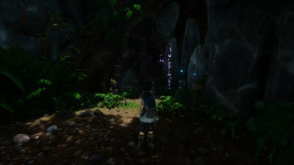 Forgotten Forest Rot