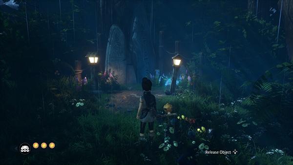 Lantern Cave Taro