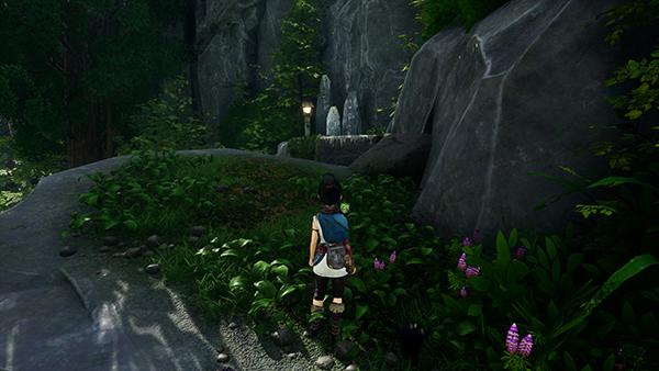 Rusu Mountain Cliff 2