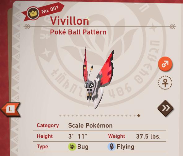 Poke Ball Pattern