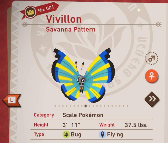 Savanna Pattern