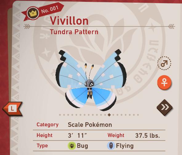 Tundra Pattern